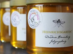 Engagiert für Biene sucht Blüte