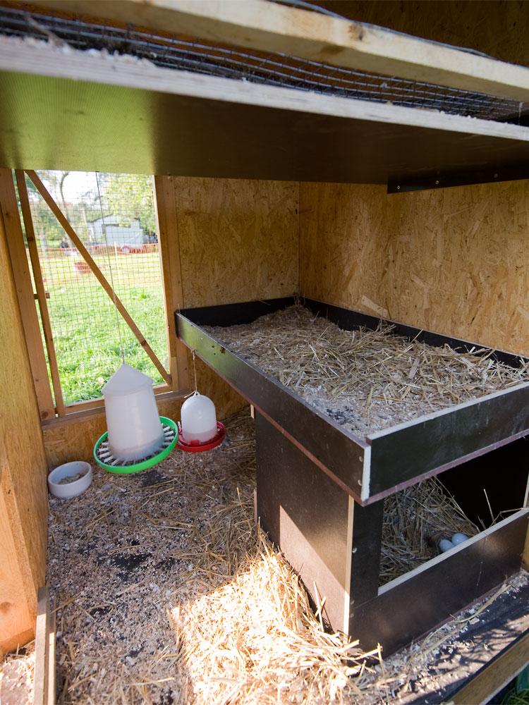 Mobiler Hühnerstall Innenraum
